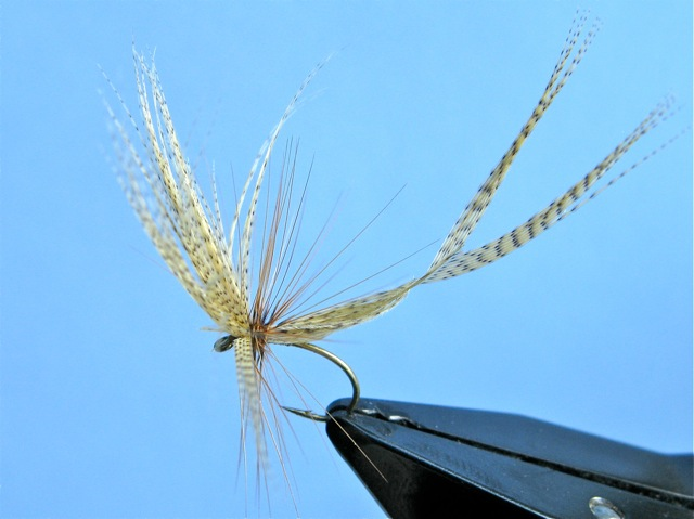 Darbee 2 Feather Fly