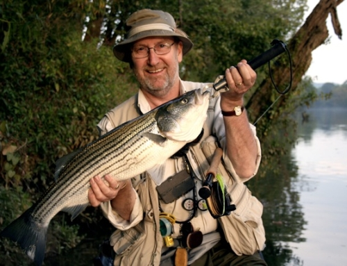 Fishing Montage Video